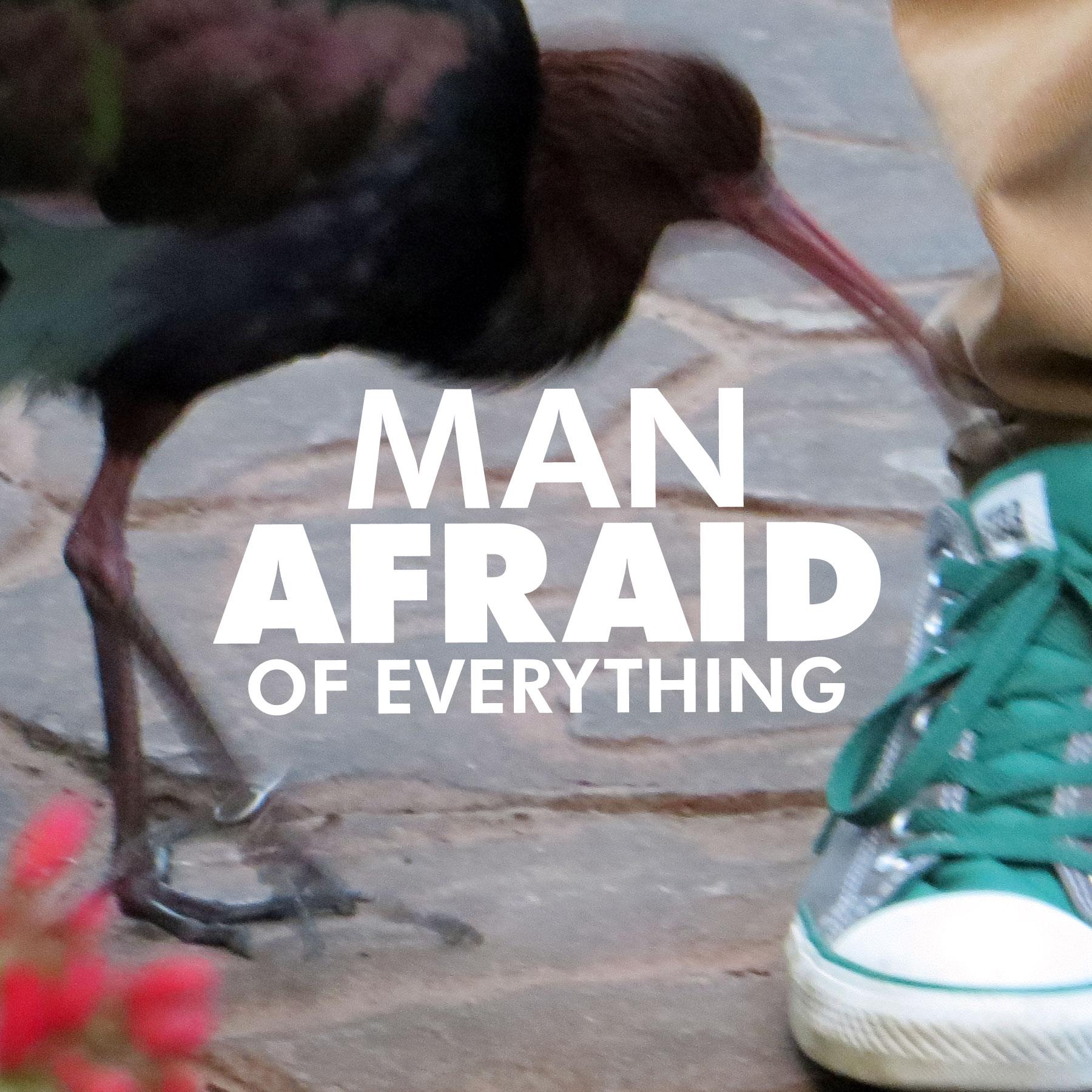 Man Afraid of Everything